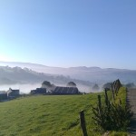 Moel yr Iwrch in the mist